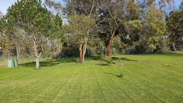 bed & breakfast pintadera alghero - il giardino
